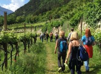 Trentino Wine and Flavours Route - Gemme di Gusto - I2