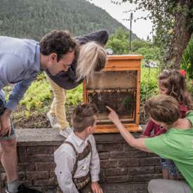 Beekeeping and Herb Garden - FI